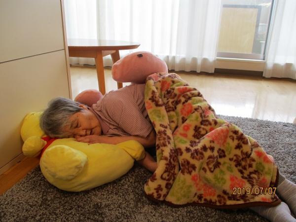 フー様昼寝
